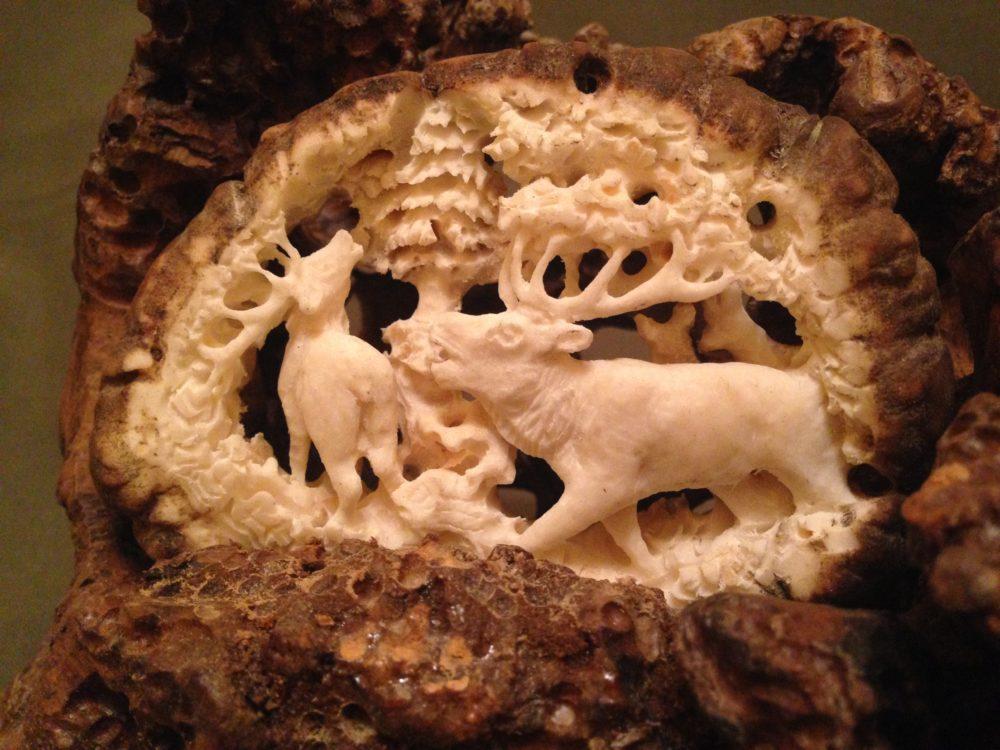 Szarvasbőgés agancsrózsában